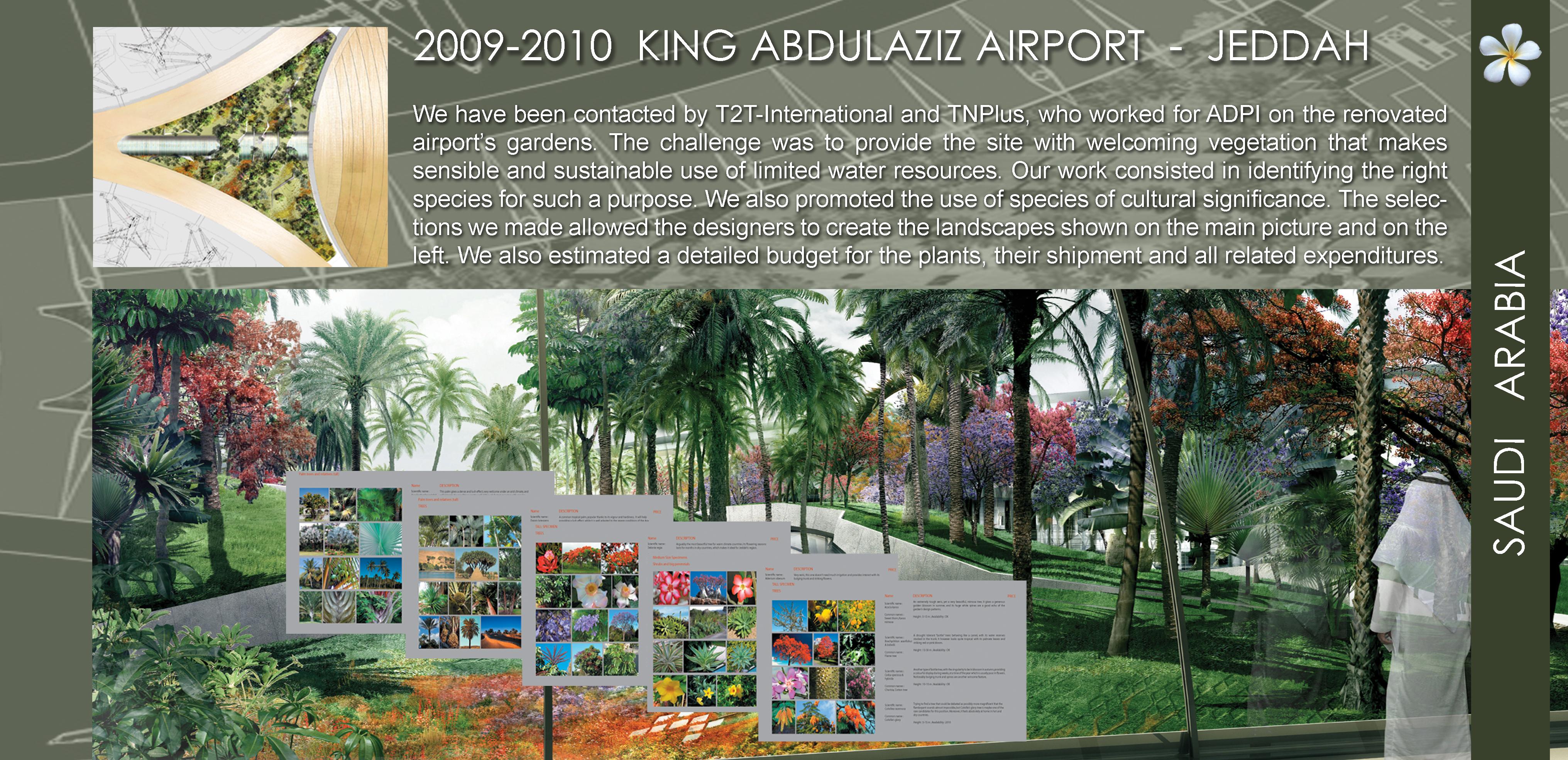 air arabia case study